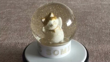 Hot sale Cat snow globe animal snow ball for home decoration